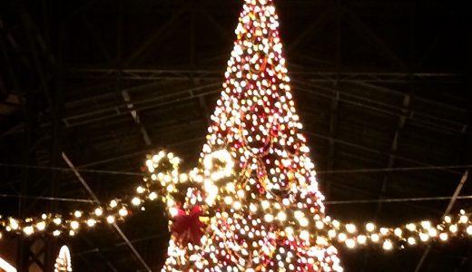 ディズニーランドのクリスマス☆2016年のグッズやパレードなど詳細をご紹介!