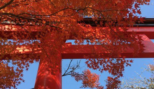 高尾山 紅葉の時期の服装や混雑を避ける方法まで詳しく解説!
